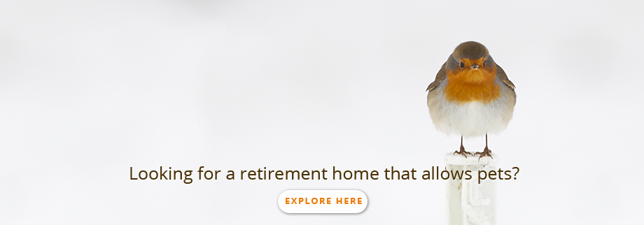 Looking for retirement home that allows pets ?
