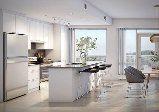 Luminous modern kitchen