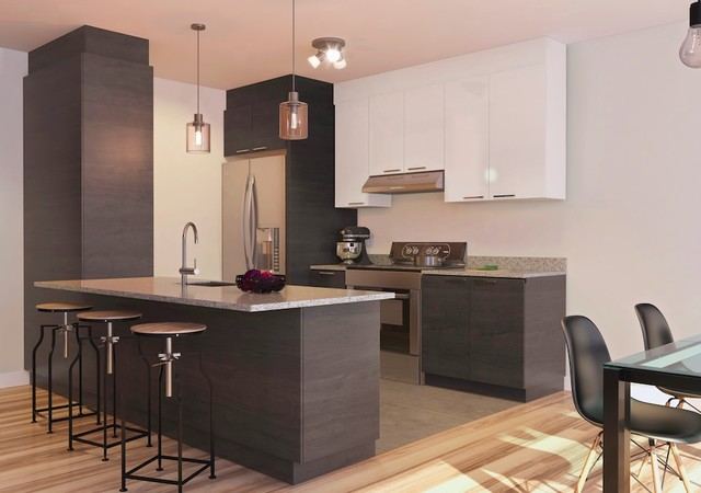 Kitchen with dark finishes
