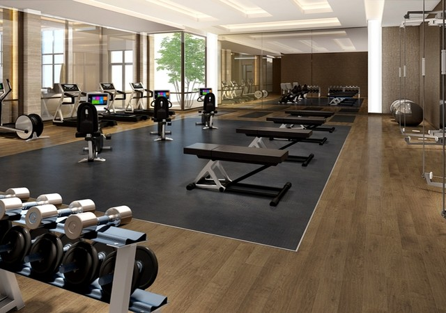 equinoxe_chagall_gym