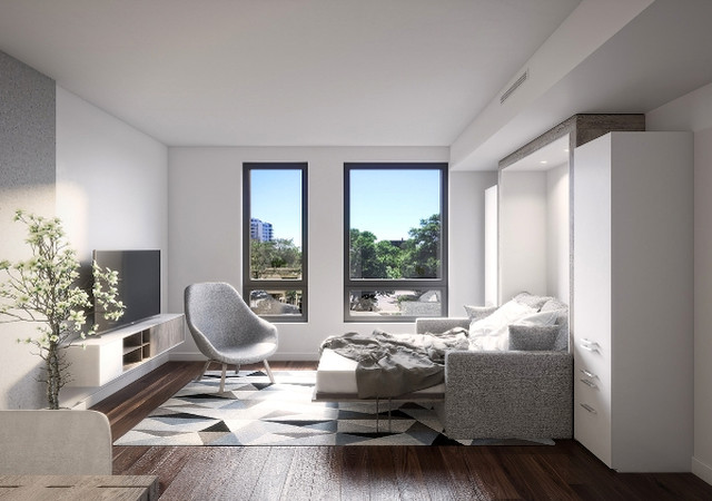 Living room with two large windows