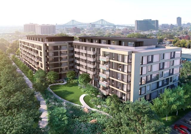 Vue de haut du projet U31 à Rosemont avec un grand jardin
