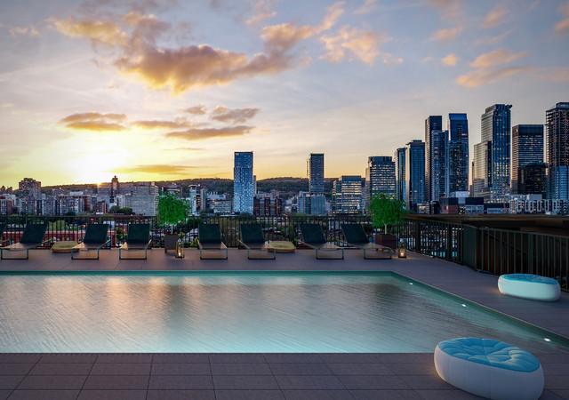 Will + Rich la piscine sur la terrasse