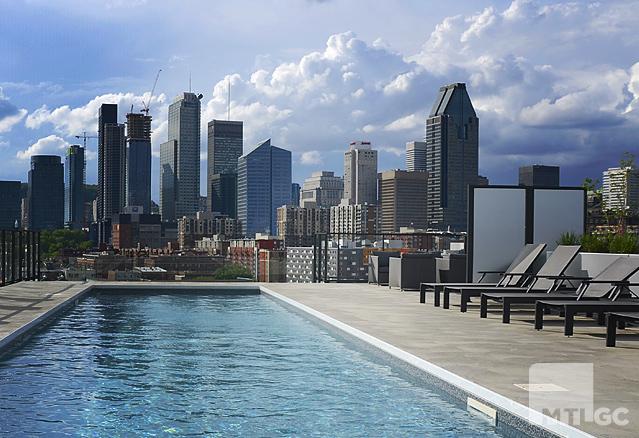 bassin-du-havre-piscine-vue-sur-ville