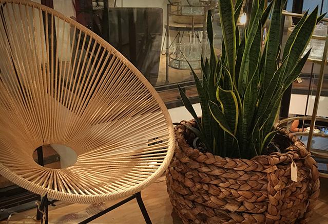 Chaise et plante dans un condo style boho-chic