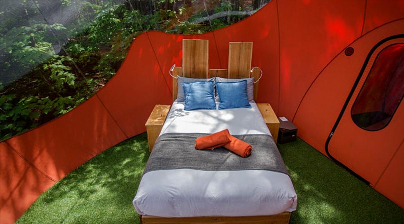 bulles canopée lit