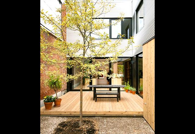 la terrasse et l'arbre